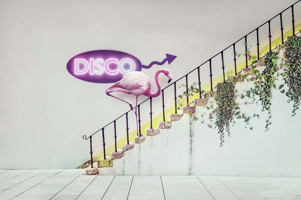 Poster: To the disco - Digital Art