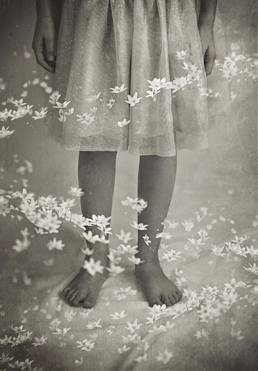 Poster:  Among floating sippers - Flowers are flowing around the legs of a girl with a dress. A beautiful pic...