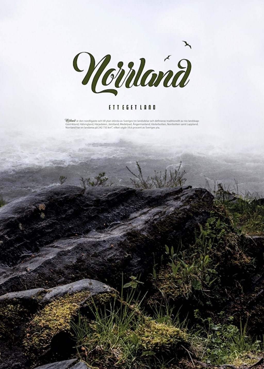 Poster: NORRLAND (5) - Analog