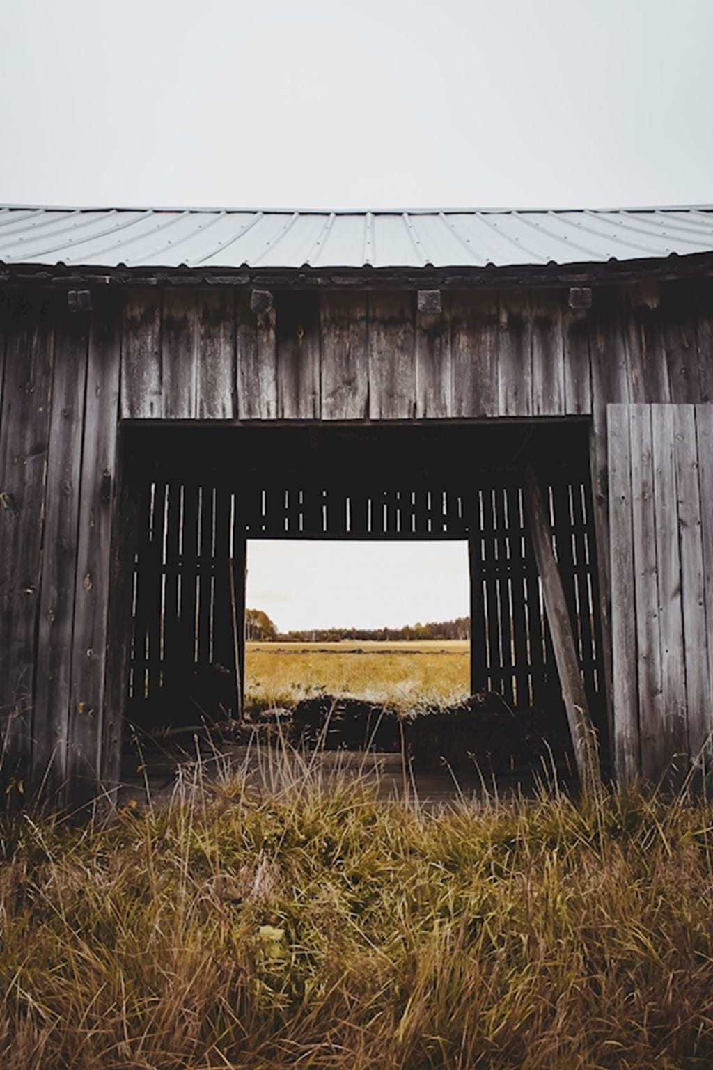 Poster: The old hay barn - Analog