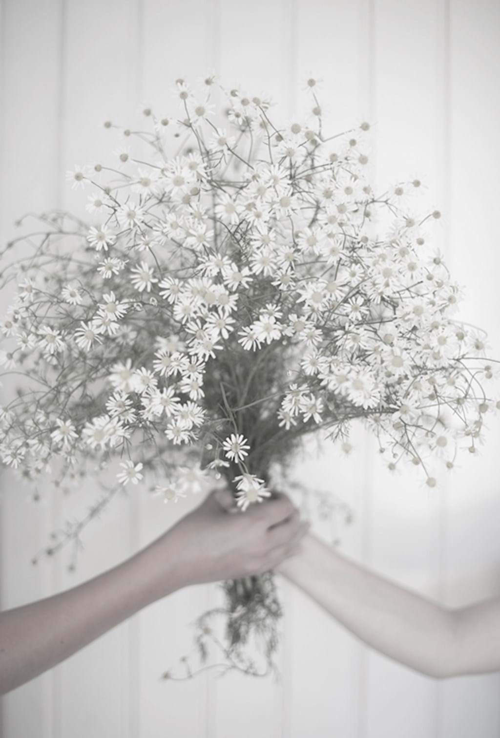 Poster: Together - This is a very pretty picture with very muted colours. It is of two hands h...