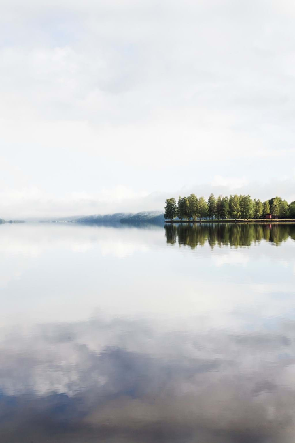Poster: Lonely - This magical picture of a lake sitting stil and of trees a little bit furth...