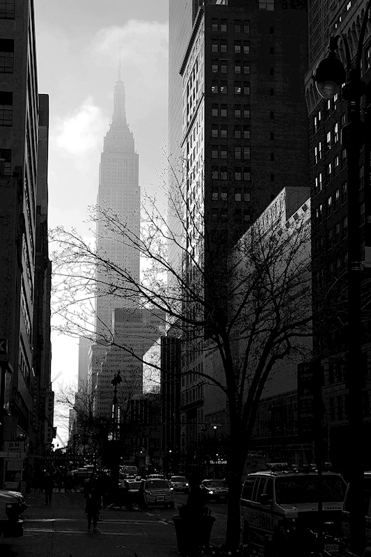 Empire State Building posters & prints by Sven Waldemarsson