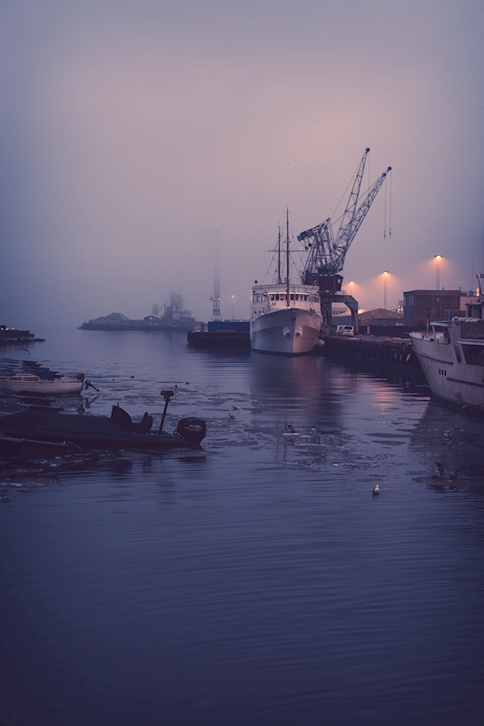 Misty morning posters & prints by Disa Eriksson Hokenstrom