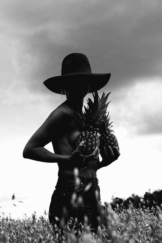 Lady and The pineapple poster av Lars Toll