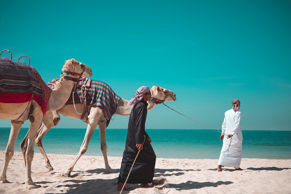 The Camel Walk posters & prints by Thomas Hilfling