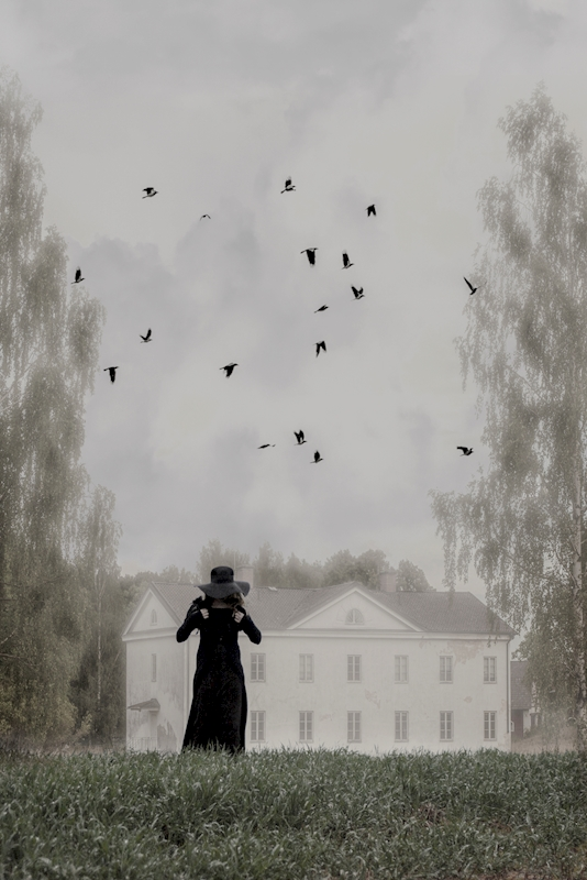 Not all crows are ravens posters & prints by Ann-Kristin  Enderud