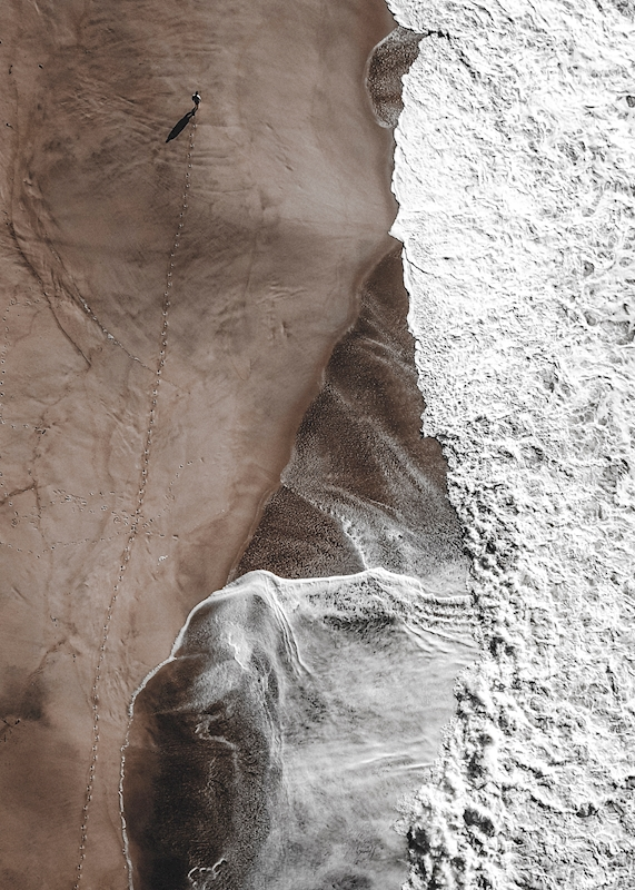 Walk posters & prints by Luís Eusébio