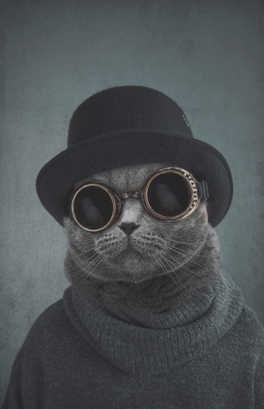Cat with the hat poster av Jenni Tervahauta