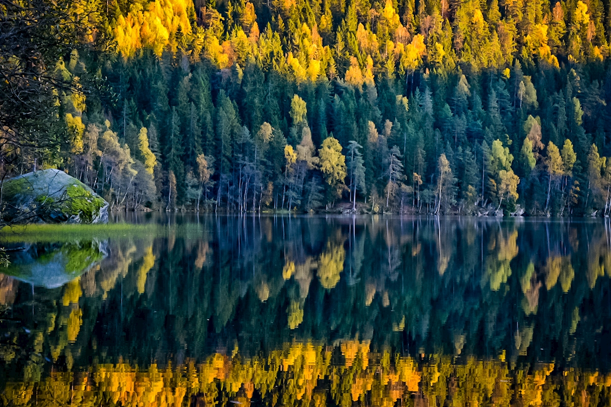 Colorful reflections posters & prints by Dag Ivar Nordby