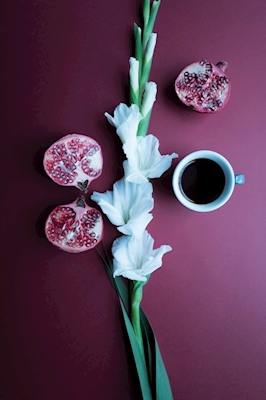 Coffee is a fruit -7