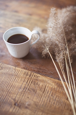 Coffe and pampas