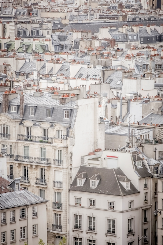 Rooftops in Paris posters & prints by Magdalena Martin