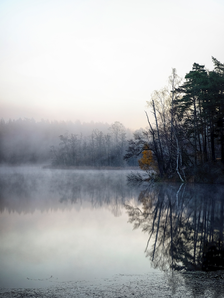 Early morning by the lake Poster von J-O Eriksson