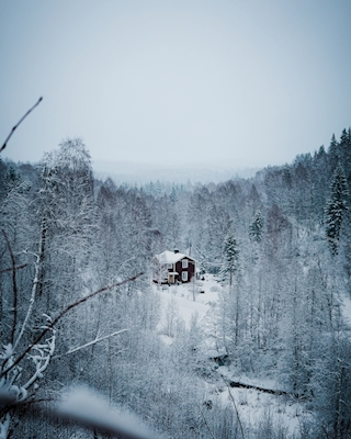 Home in the swedish nature