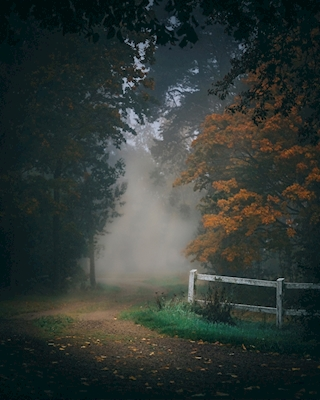 A Tale of Autumn