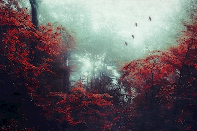 Mystical Forest in Red Foliage